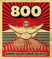 Ni Pigeon Ni Espion